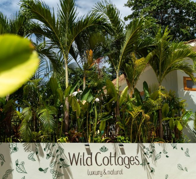 210722-Wild-Cottage-0022