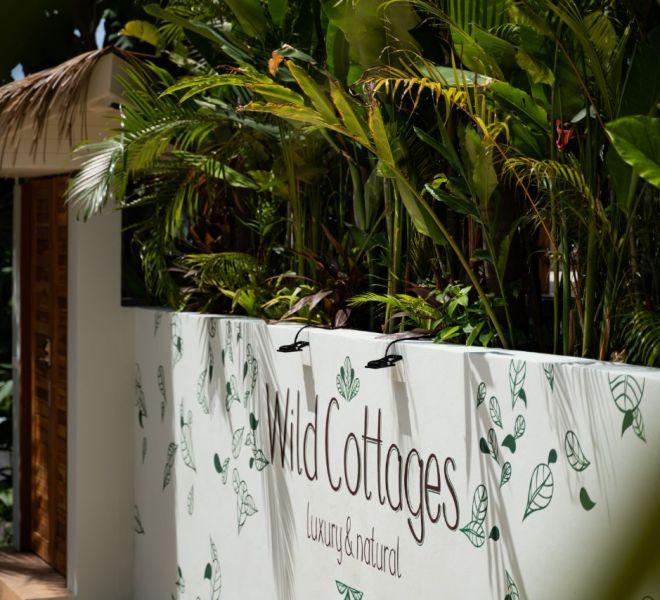 210722-Wild-Cottage-0023